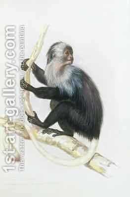 Colobus from The Knowsley Menagerie by Benjamin Waterhouse Hawkins - Reproduction Oil Painting