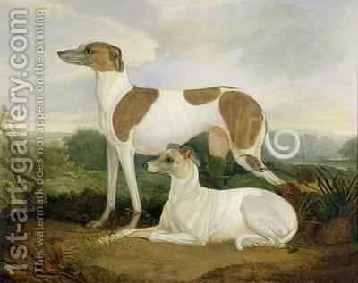 Two Greyhounds in a Landscape by Charles Hancock - Reproduction Oil Painting