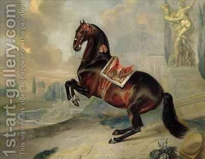 The dark bay horse Valido performing a Levade movement by Johann Georg Hamilton - Reproduction Oil Painting