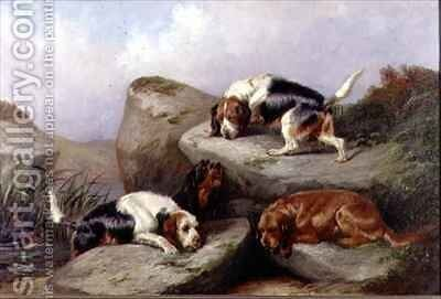 Otterhounds by Colin Graeme - Reproduction Oil Painting
