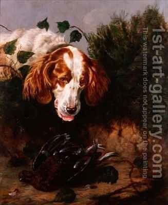 Just Shot  Spaniel with a Dead Grouse by Colin Graeme - Reproduction Oil Painting