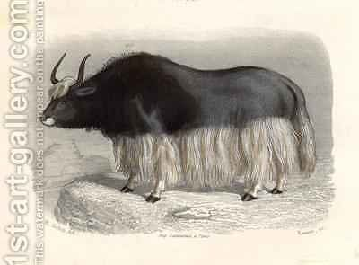 The Tartary Cow by (after) Gobin, H. - Reproduction Oil Painting
