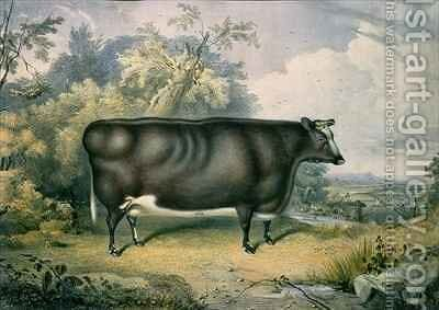 The Cottesmore Prize Heifer by James William Giles - Reproduction Oil Painting