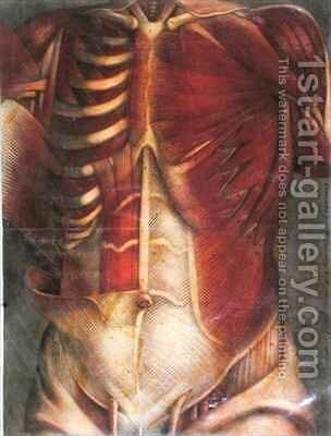 Muscles of the thorax and abdomen by Jacques - Fabien Gautier - Dagoty - Reproduction Oil Painting