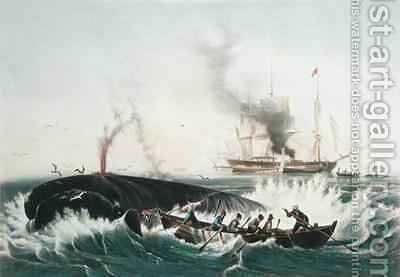Attacking a Right Whale and Cutting In from The Whale Fishery by (after) Garneray, Louis Ambroise - Reproduction Oil Painting
