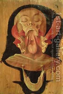 Anatomical drawing of the head by Hieronymus Fabricius ab Aquapendente - Reproduction Oil Painting