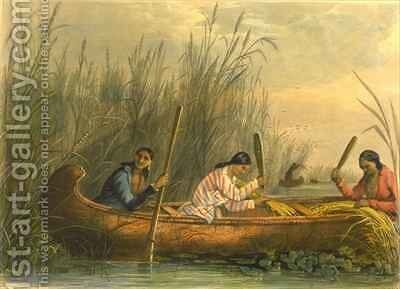 Gathering Wild Rice by (after) Eastman, Captain Seth - Reproduction Oil Painting