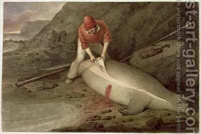 Flinching a yearling a young sea elephant Tristan da Cunha by Augustus Earle - Reproduction Oil Painting