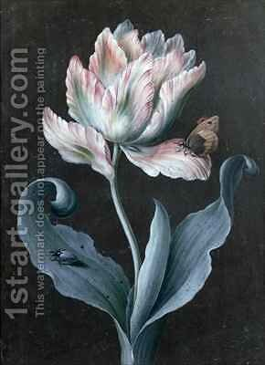 Parrot Tulip with Butterfly and Beetle by Barbara Regina Dietzsch - Reproduction Oil Painting