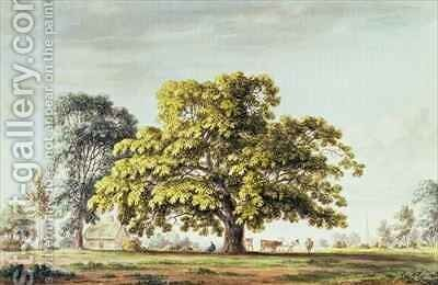 A Walnut Tree at Denton near Grantham by Anthony Devis - Reproduction Oil Painting