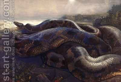 Kaa the Python by Charles Maurice Detmold - Reproduction Oil Painting