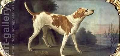 Briador a Dog from the Conde Pack by Alexandre-Francois Desportes - Reproduction Oil Painting