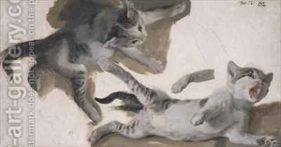 Sketches of a Kitten 2 by Alexandre-Francois Desportes - Reproduction Oil Painting