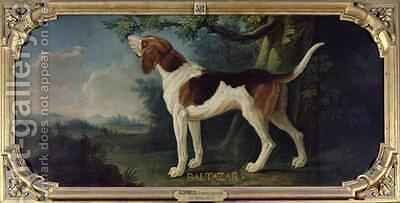 Baltazar a Dog from the Conde Pack by Alexandre-Francois Desportes - Reproduction Oil Painting