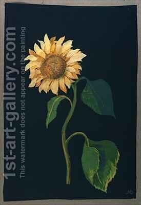 Sunflower by Mary Granville Delany - Reproduction Oil Painting