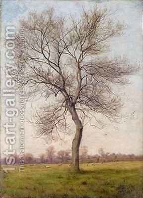 Study of an Ash Tree in Winter by James Hey Davies - Reproduction Oil Painting