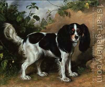 King Charles Spaniel by David Cunliffe - Reproduction Oil Painting