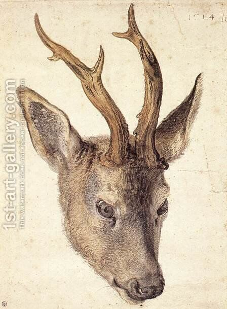 Head of a Stag 2 by Albrecht Durer - Reproduction Oil Painting
