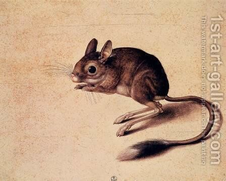 Gerbil by Jacopo Ligozzi - Reproduction Oil Painting
