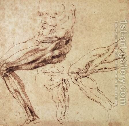 Three Studies of a Leg by Michelangelo - Reproduction Oil Painting