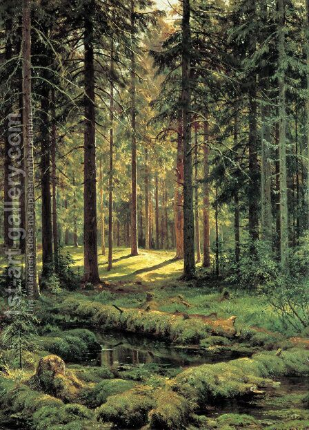 Coniferous Forest Sunny Day 1895 by Ivan Shishkin - Reproduction Oil Painting