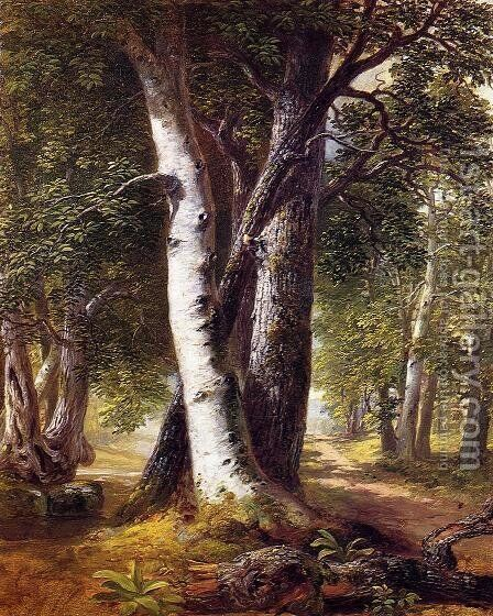Woodland Path 1845-1850 by Asher Brown Durand - Reproduction Oil Painting
