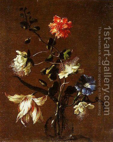 Three Caper Flowers a Carnation a Bindweed and a Tulip by dei Fiori (Nuzzi) Mario - Reproduction Oil Painting