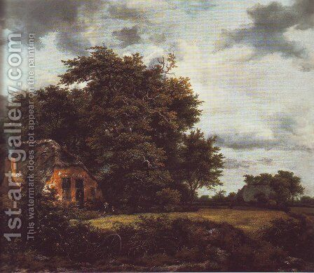 Cottage under trees near a grainfield by Jacob Van Ruisdael - Reproduction Oil Painting
