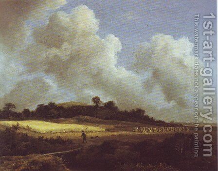 View of grainfields with a distant town by Jacob Van Ruisdael - Reproduction Oil Painting