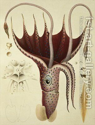 Squid by (after) Chazal, Antoine - Reproduction Oil Painting