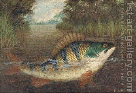 A perch rising by A. Roland Knight - Reproduction Oil Painting