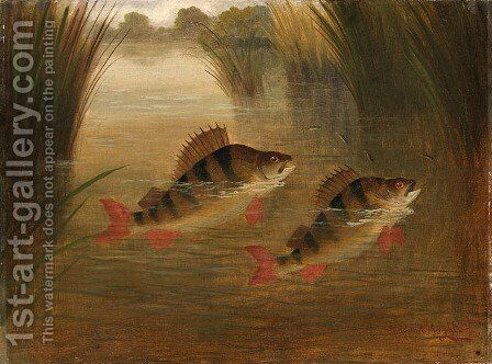 Perch Rising by A. Roland Knight - Reproduction Oil Painting