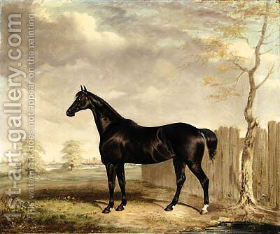 Gypsy, A Black Horse in a Landscape by Abraham and Webster, Thomas Cooper - Reproduction Oil Painting