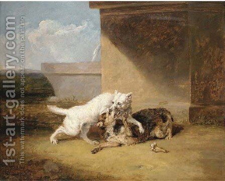 A dog-fight by Abraham Cooper - Reproduction Oil Painting