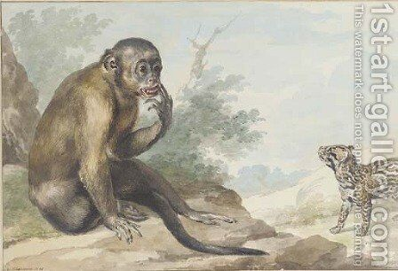 A monkey seated on a rock looking at a civet by Aert Schouman - Reproduction Oil Painting