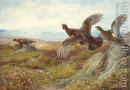 Pheasant by Archibald Thorburn - Reproduction Oil Painting