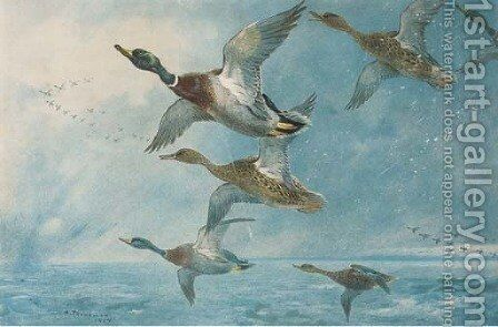 Geese by Archibald Thorburn - Reproduction Oil Painting