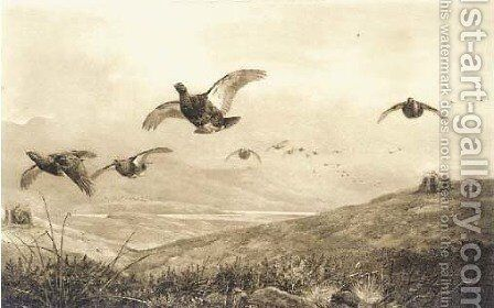 On the grouse moor by Archibald Thorburn - Reproduction Oil Painting
