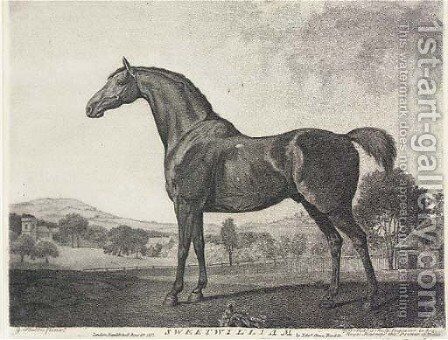 Sweetwilliam (Siltzer 264), by G. J. Stubbs by (after) Stubbs, George - Reproduction Oil Painting