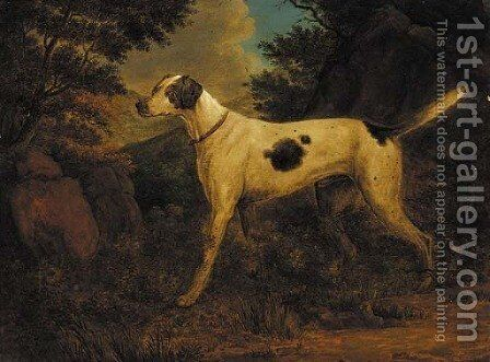 Dash, Colonel Thornton's terrier, in a wooded landscape by (after) Sawrey Gilpin - Reproduction Oil Painting