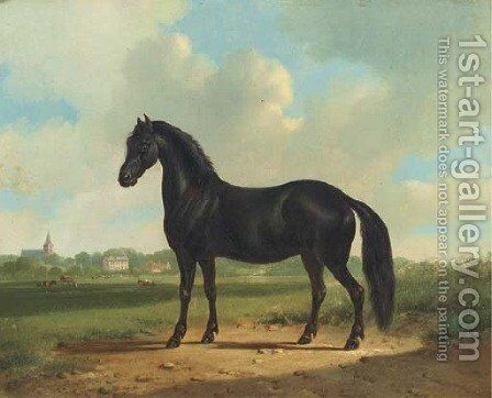Black beauty by Albertus Verhoesen - Reproduction Oil Painting