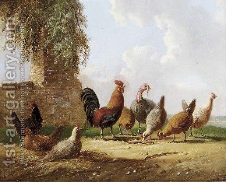 Feathered friends by Albertus Verhoesen - Reproduction Oil Painting