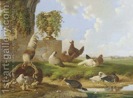 Poultry and ducks by a ruin by Albertus Verhoesen - Reproduction Oil Painting
