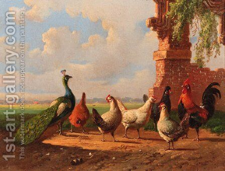 Poultry by ruined walls by Albertus Verhoesen - Reproduction Oil Painting