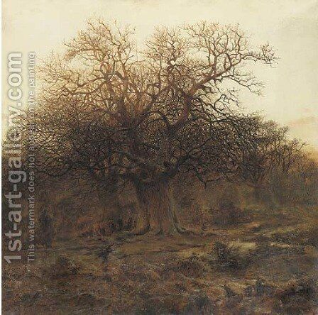 Twilight, Burnham Beeches by Andrew MacCallum - Reproduction Oil Painting