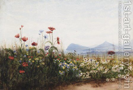 Poppies, cornflowers and daisies on Killiney Hill by Andrew Nicholl - Reproduction Oil Painting