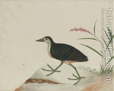 An exotic bird perched on a stump by Anglo-Chinese School - Reproduction Oil Painting