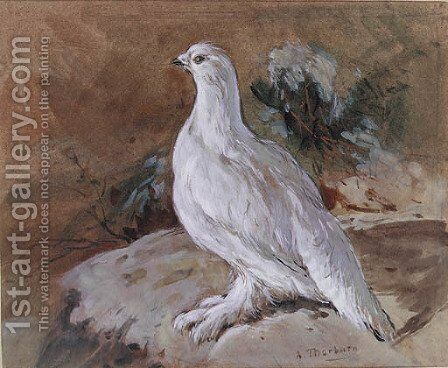A Ptarmigan resting by Archibald Thorburn - Reproduction Oil Painting