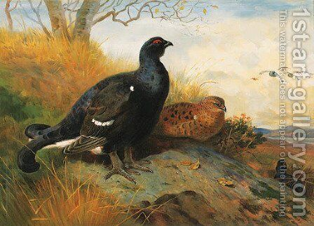 Blackgame on a rocky Outcrop beneath a Tree, a lake beyond by Archibald Thorburn - Reproduction Oil Painting