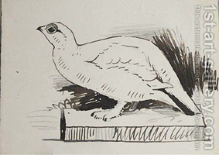 Sketch of bird by Archibald Thorburn - Reproduction Oil Painting